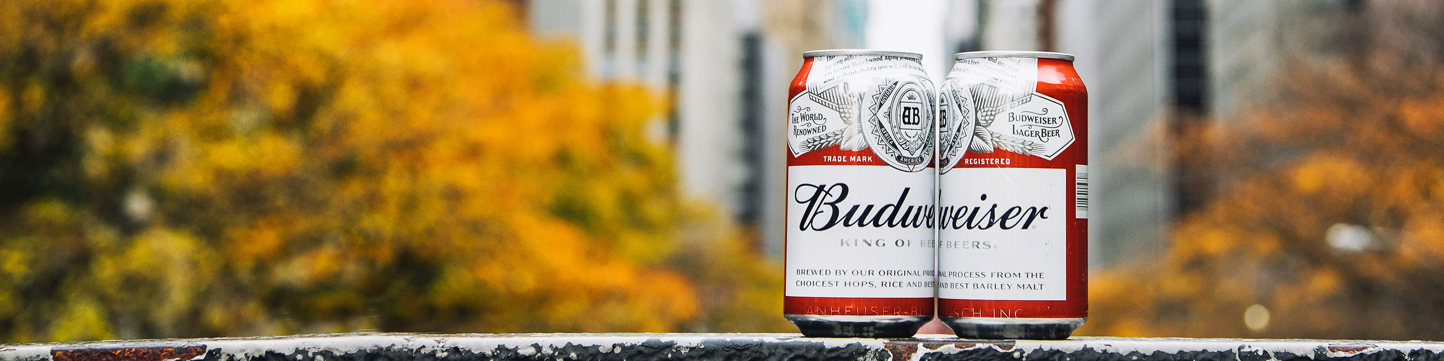 Buy Budweiser online from nearby liquor stores via Minibar Delivery.